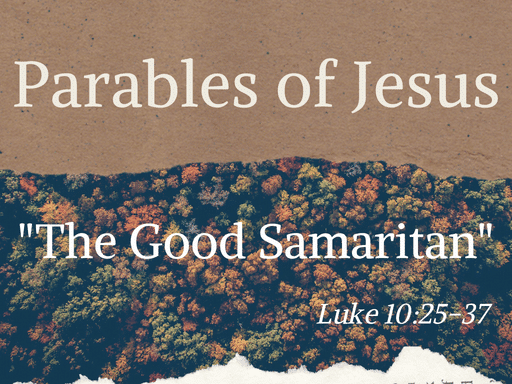 The Good Sanitarian