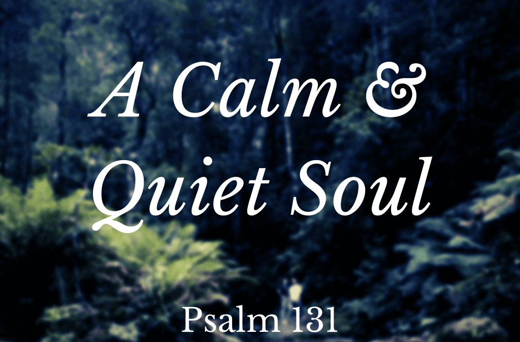 A Calm and Quiet Soul