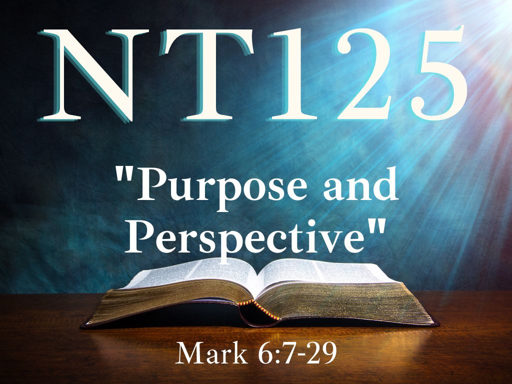 Purpose and Perspective