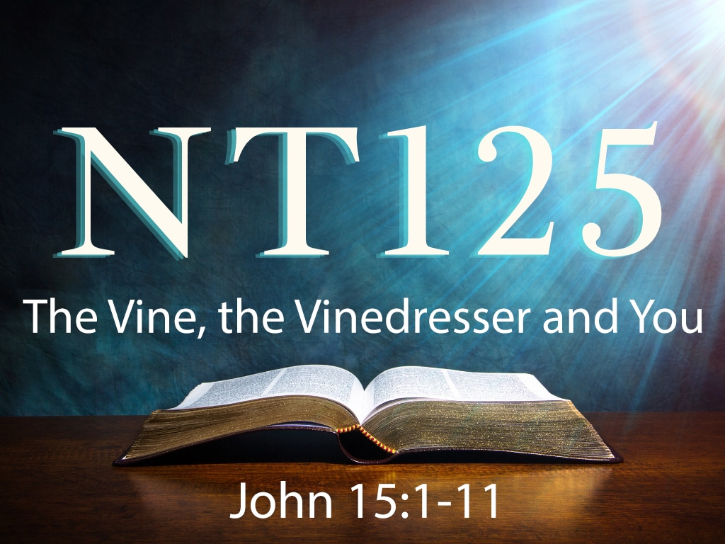 The-Vine,-the-Vinedress-and-You--image