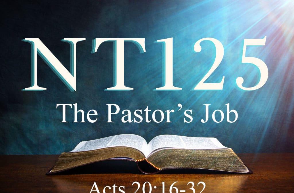 The Pastor's Job