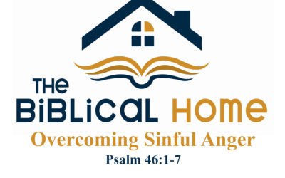 Overcoming Sinful Anger (Continued)